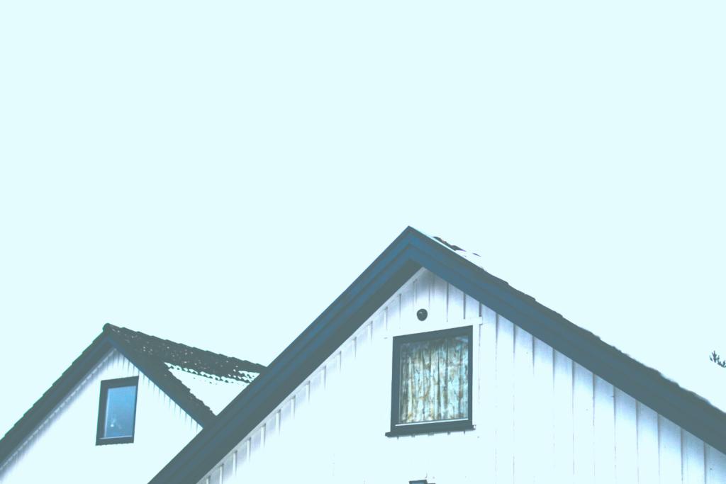 一戸建ての屋根